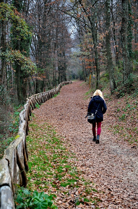 Girl, Viale, Woman, Forest, Solitude