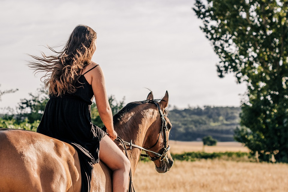 Horse, Girl, Ride, Trot, Woman, Nature, Beauty