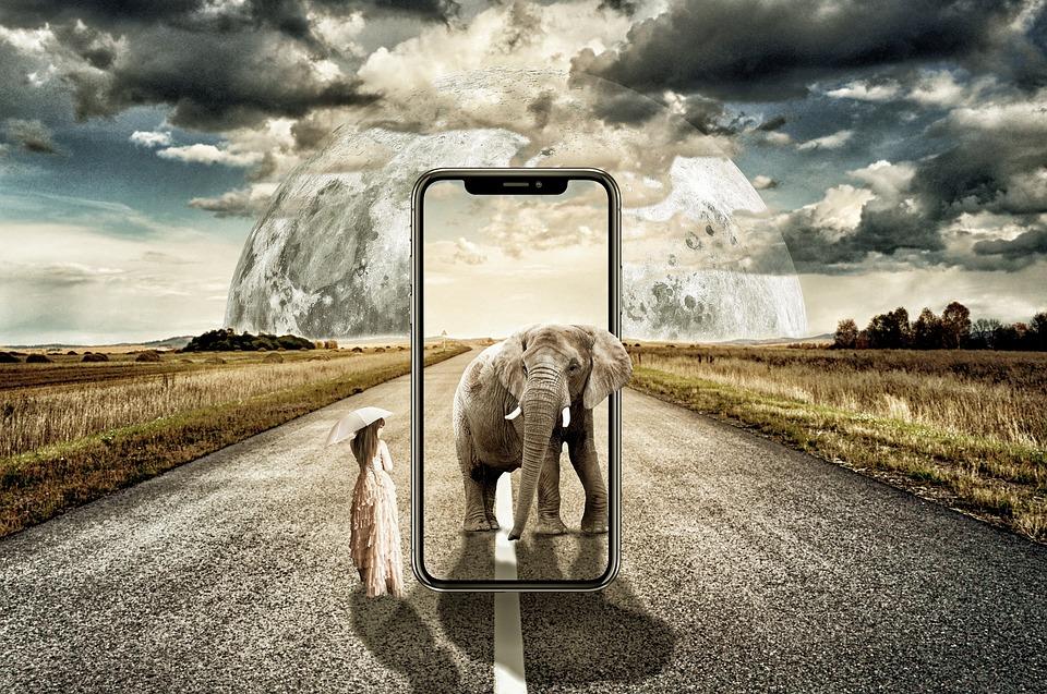 Free Photo Women Elephant Iphone X Surreal Landscape Max Pixel