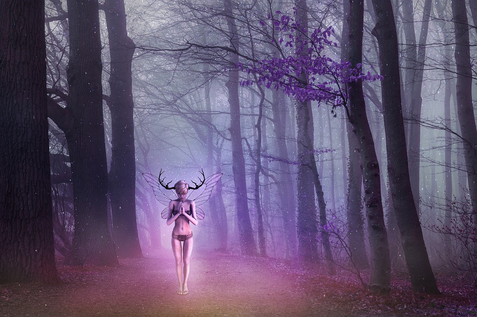 Forest, Fantasy, Women, Surreal, Mystic, Mysterious