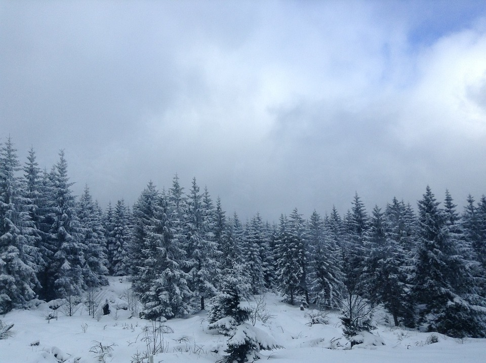 Wlad, Holiday, Winter, Wonderland, Beautiful, Nature