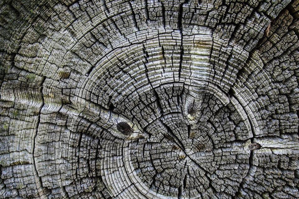 Wood, Background, Circle, Old