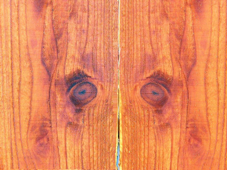 Wood Background, Wood, Background, Fence, Eyes