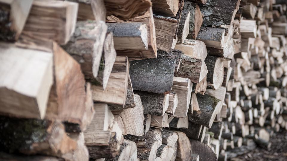 Life, Beauty, Scene, Wood, Stacks, Timber, Firewood
