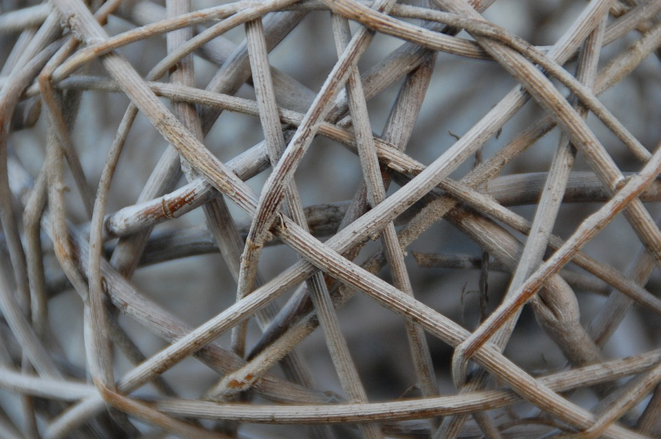Wood, Branches, Braid