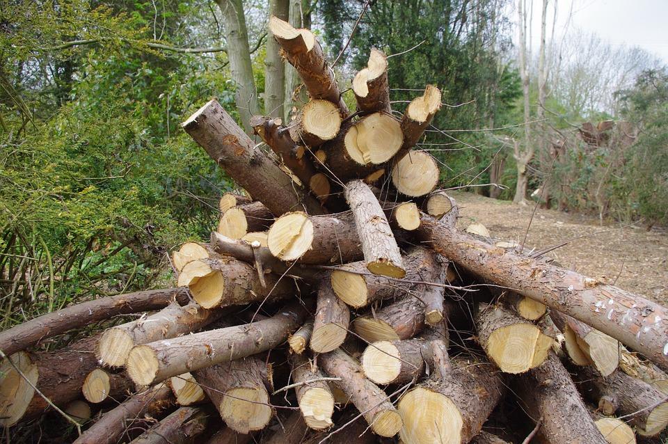 Log Pile, Countryside, Stack, Wood, Timber, Woodpile