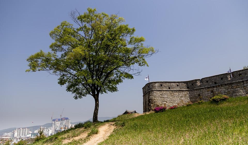Each Day, Wood, Korea, Republic Of Korea, Suwon