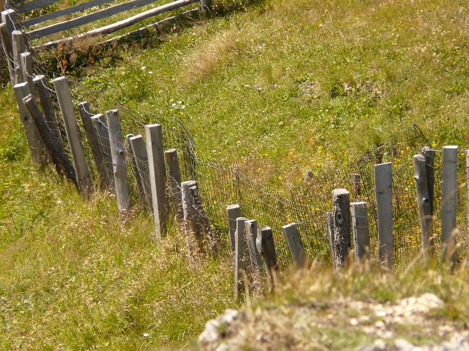 Fence, Wood, Meadow, Wood Fence, Nature