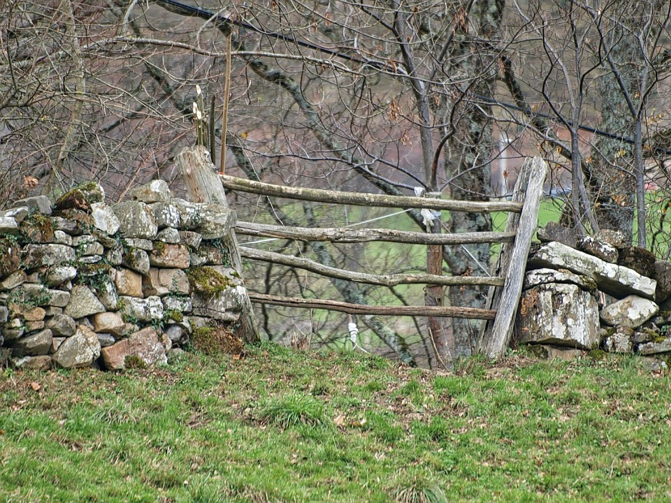 Fence Rustic Landscape Wood Green Field Nature
