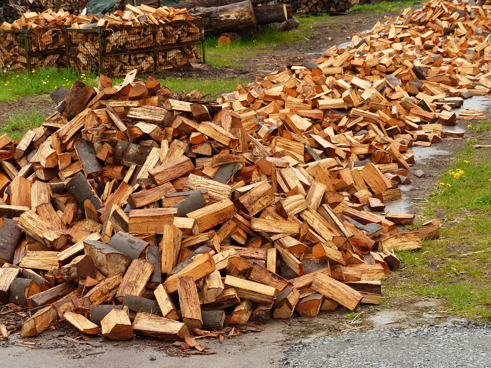 Wood, Holzstapel, Firewood, Growing Stock