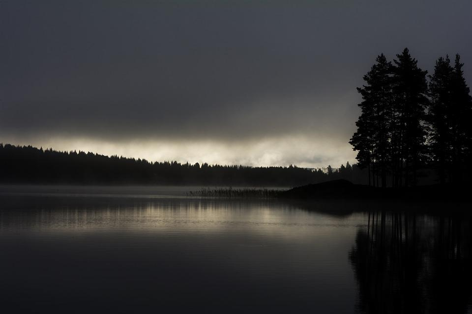 More, Sweden, Air, Trees, Nature, Wood, Forest