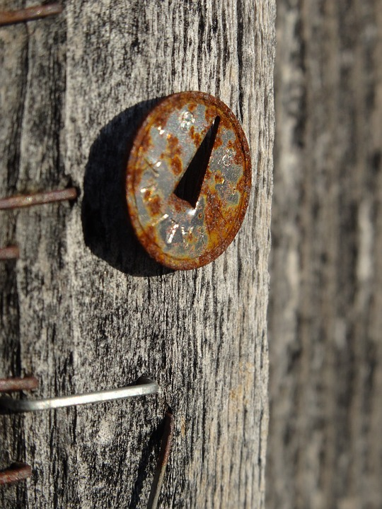 Nail, Wood, Stainless, Old, Memory, Forget, Weathered