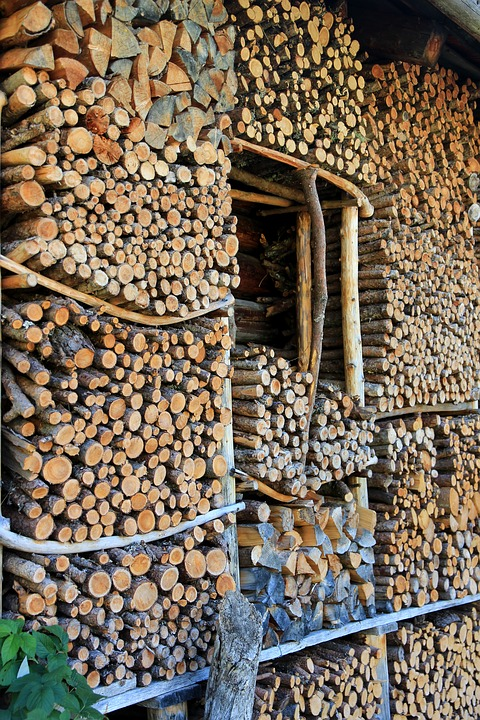 Wood, Firewood, Stack, Holzstapel, Growing Stock