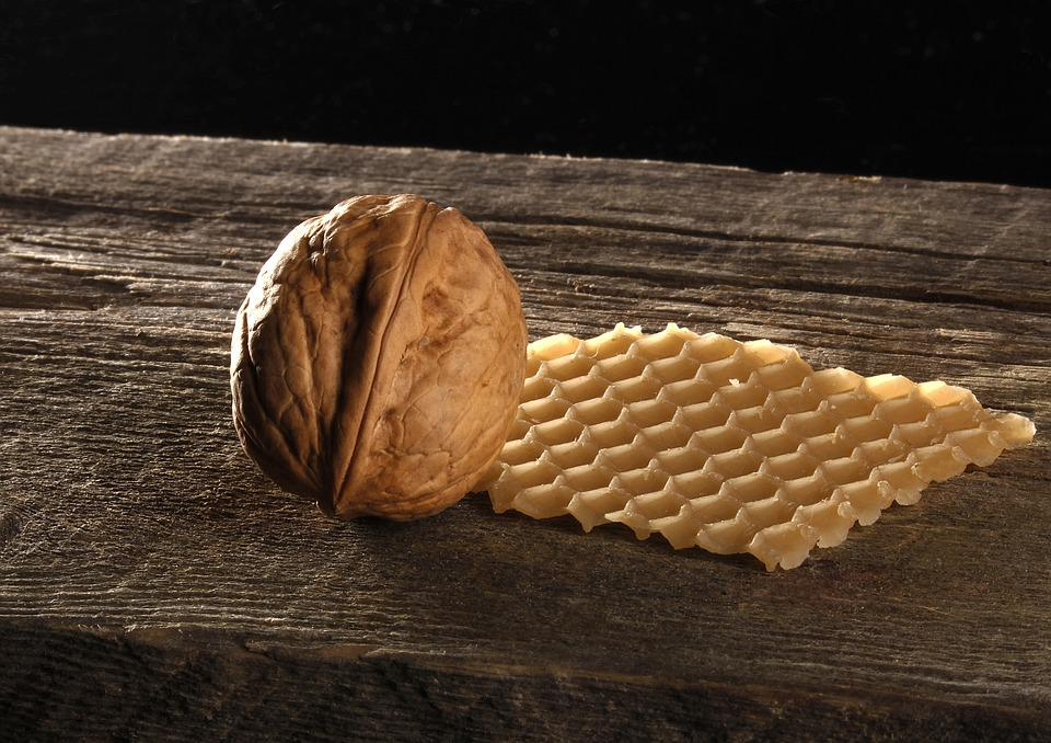 Walnut, Honeycomb, Wood, Still Life