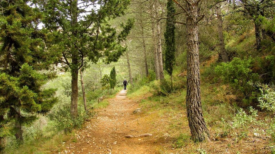Horta De Sant Joan, Hiking, Tourism, Nature, Wood