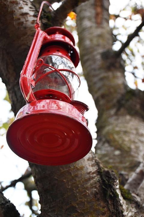 Lamp, Tree, Red, Garden, Oil, Wood, Fire, Enlighten