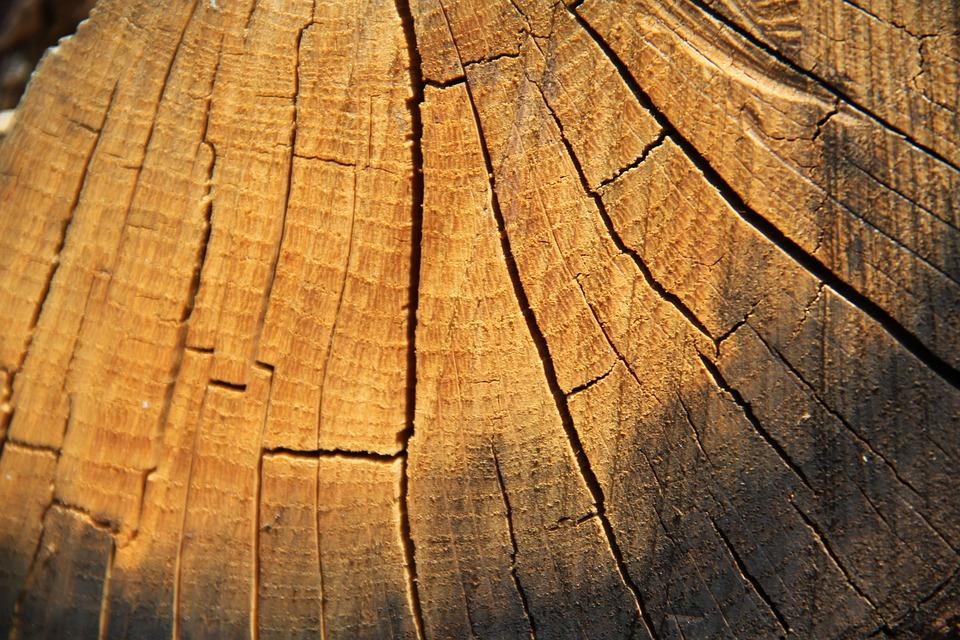 Wood, Close Up, Log, Grain, Brown