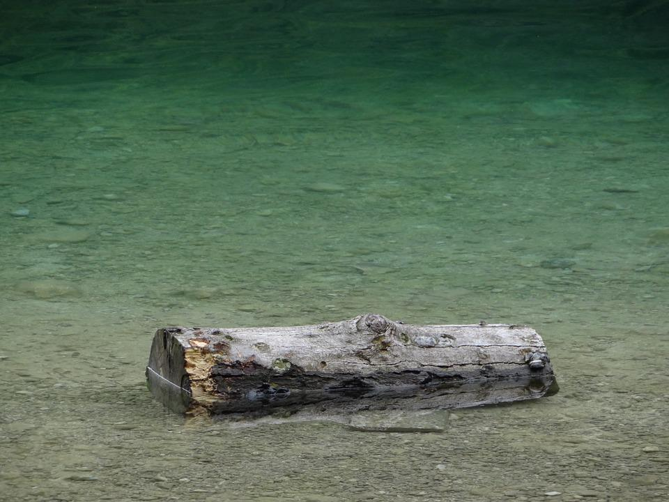 Drift Wood, Water, Wood, Green, Turquoise, Log