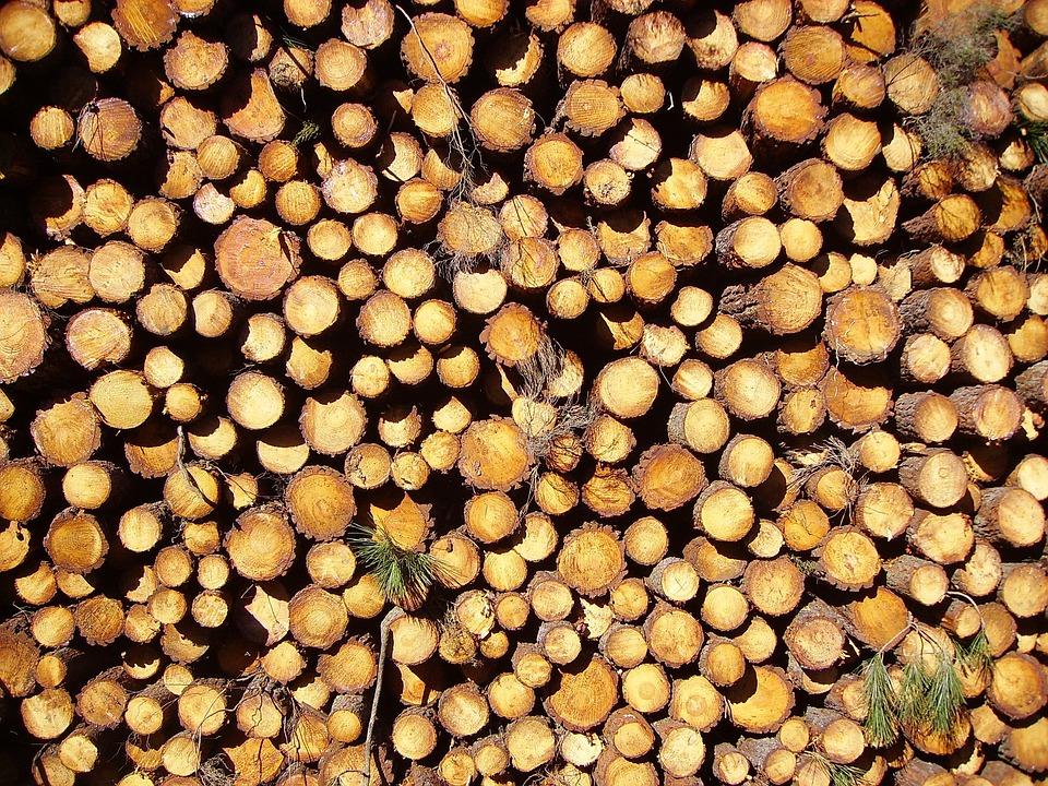 Wood, Log, Logs