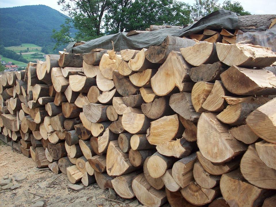 Wood, Logs, Sawmill