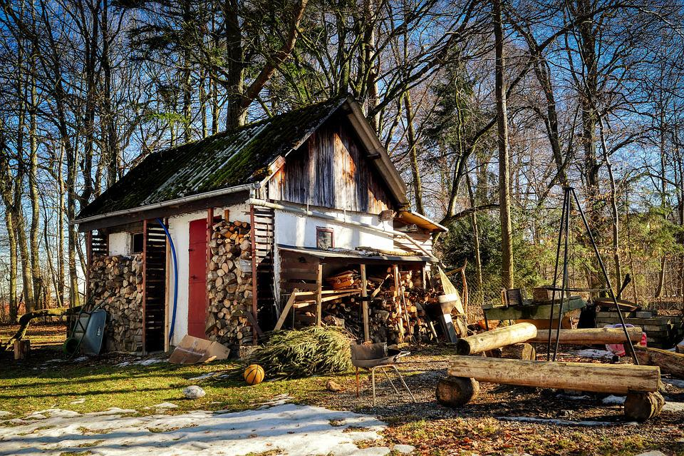 Hut, Glade, Forest, Wood Mint, Trees, Barn, Log Cabin