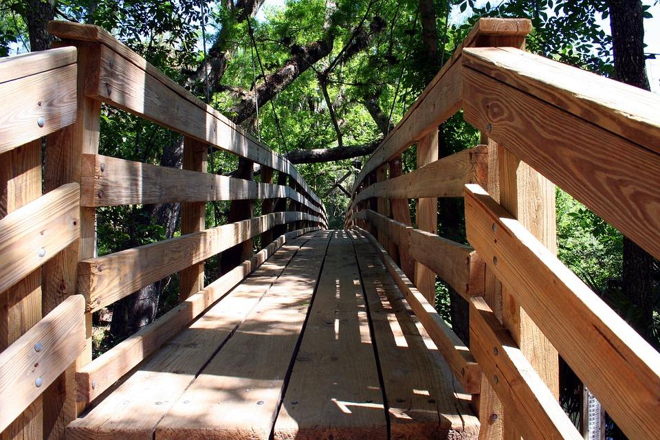 Boardwalk, Wood, Nature, Walkway, Path, Recreation