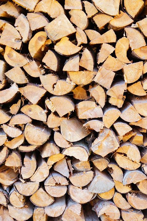 Wood, Holzstapel, Firewood, Nature, Growing Stock