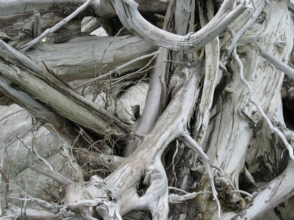 Wood, Strike, Nature