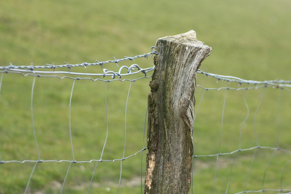 Pasture Fence, Fence Post, Fence, Pile, Wood Pile