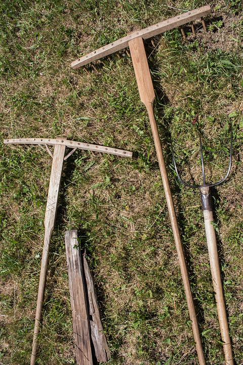 Computing, Wood Processing, Hay Rake, Bauer, Hay