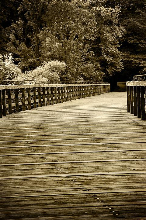 Bridge, Web, Away, Sepia, Wood, Railing
