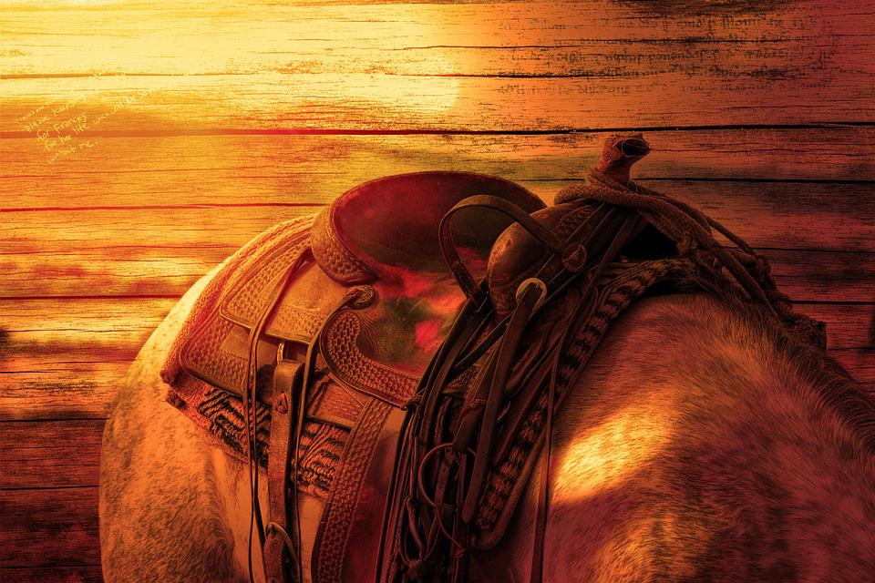 Horse's Back, Ride, Horse, Saddle, Sunlight, Wood