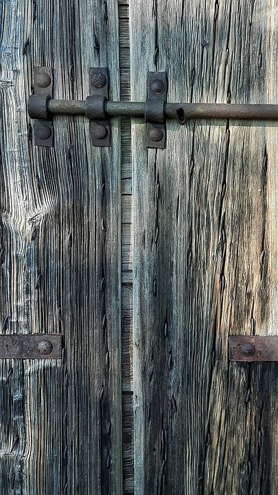 Wood, Texture, Plant, Door, Old