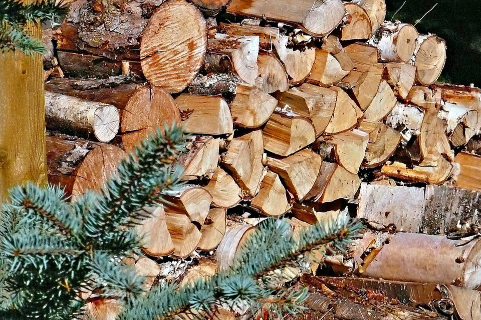 Firewood, Stack, Wood, Holzstapel, Timber, Cut, Pile