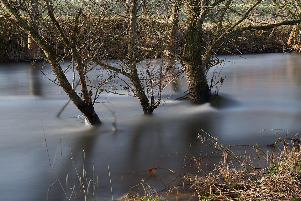 Waters, Nature, Reflection, Tree, River, Autumn, Wood