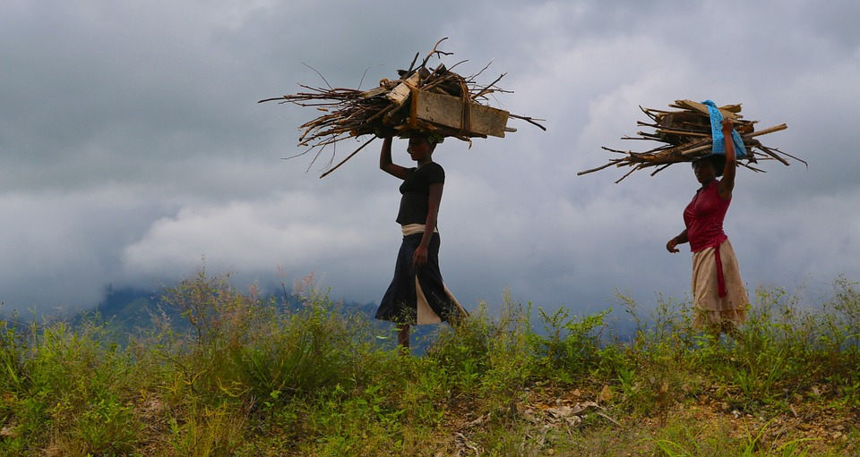Women, Wood, Woman, Uganda