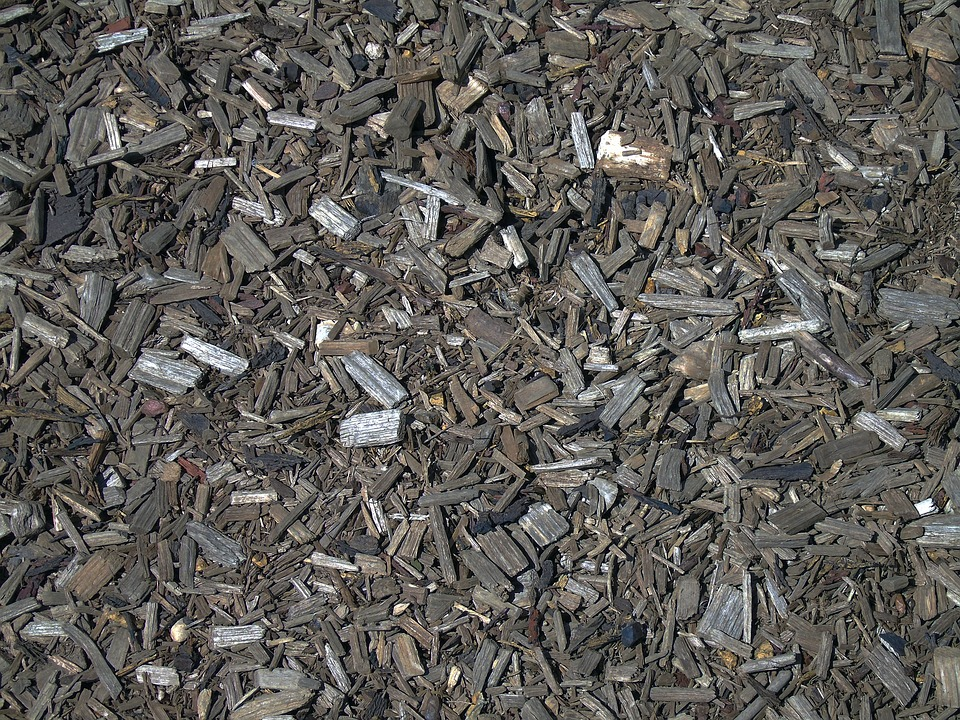 Woodchip, Bark, Wood, Wooden, Texture, Material, Brown