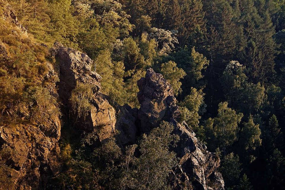 Cliff, Steep, Rugged, Mountain, Rocks, Terrain, Wooded
