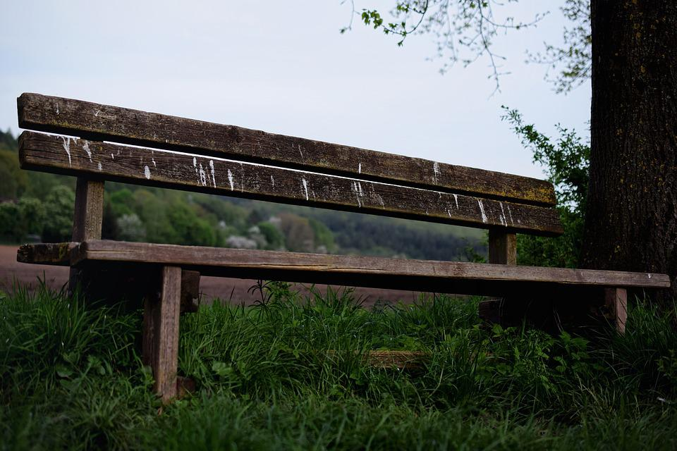 Wooden Bench, Nature, Bench, Idyllic, Old Wood Bench