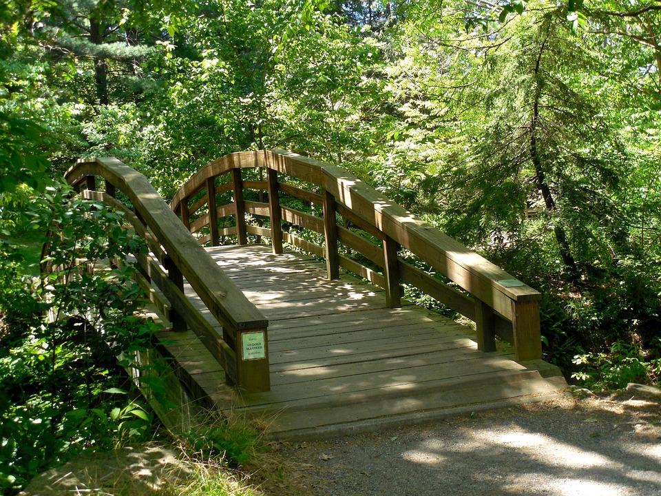 Wooden, Bridge, Nature, Wood, Landscape, Water, Outdoor