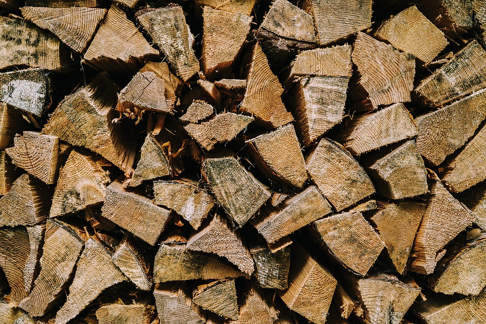 Wood, Woods, Nature, Texture, Wooden, Forest, Brown