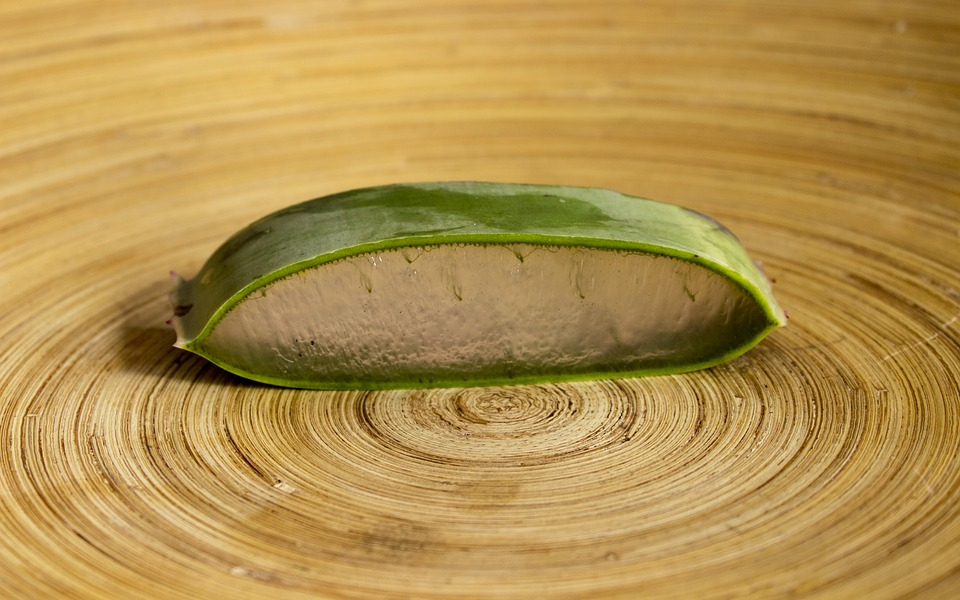 Food Wooden Healthy Wood Desktop Aloe Vera Plant
