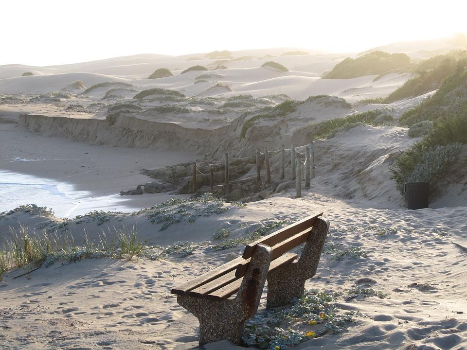 Beach, Bench, Wooden, Sand, Sea, Ocean, View, Relax