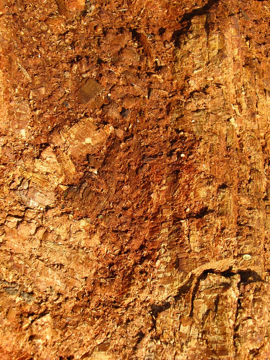 Wooden, Brown, Surfaces, Backgrounds, Textures, Woods