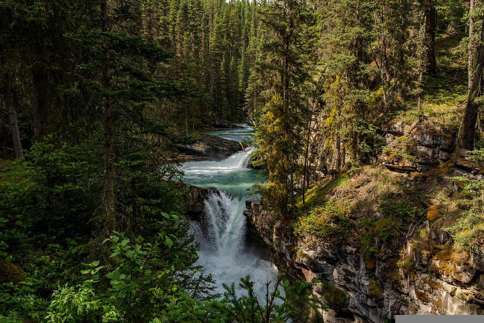 Forest, River, Waterfall, Woods, Nature, Landscape