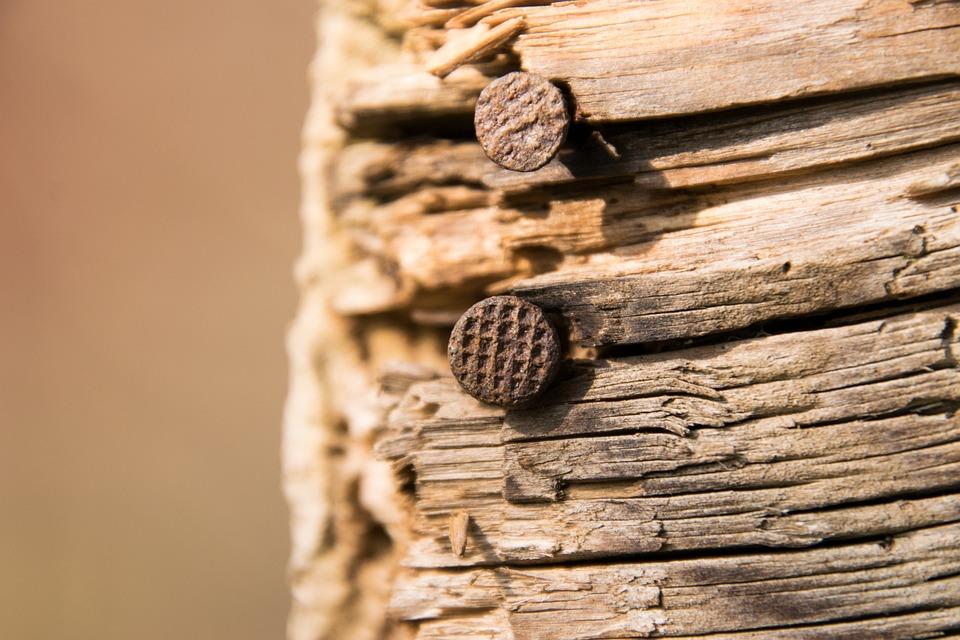 Wood, Woods, Background, Nail