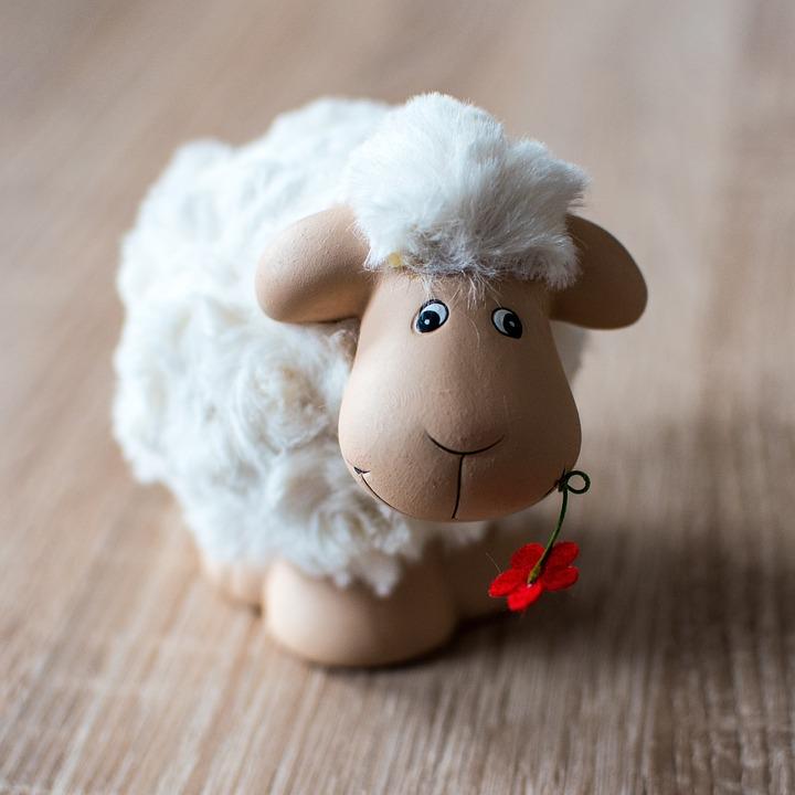 Sheep, Easter, Schäfchen, Wool, Lambs, Passover