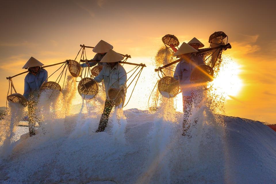 Salt, Field, Province, Vietnam, Work, Sunlight, Workers