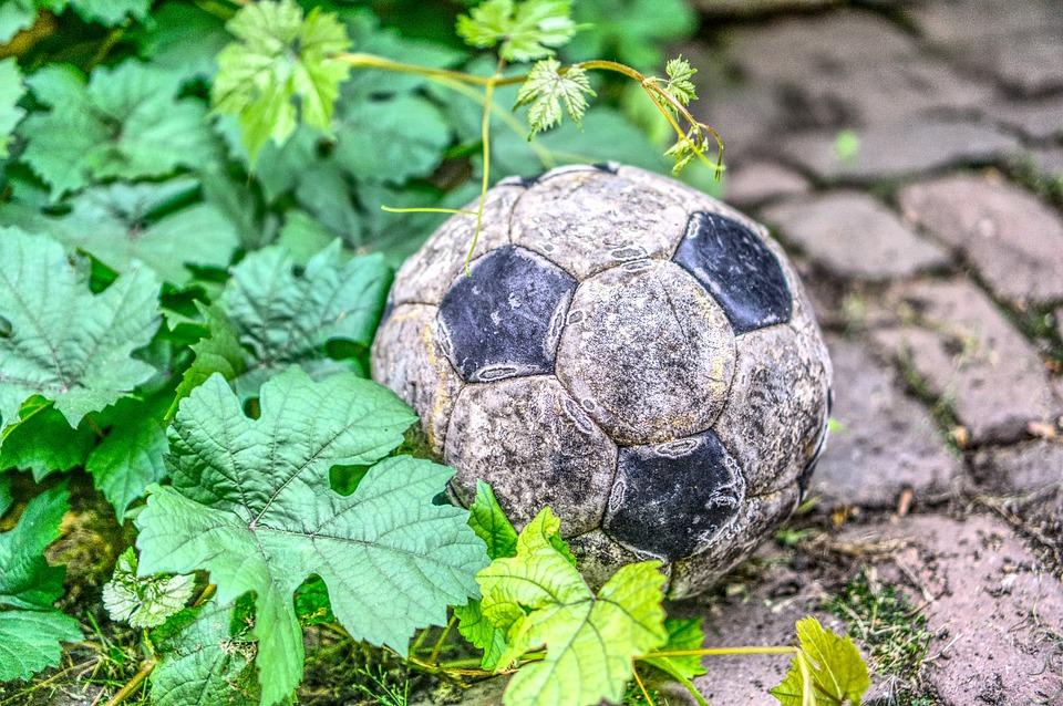Football, Ball, Broken, Leaves, Green, World Cup