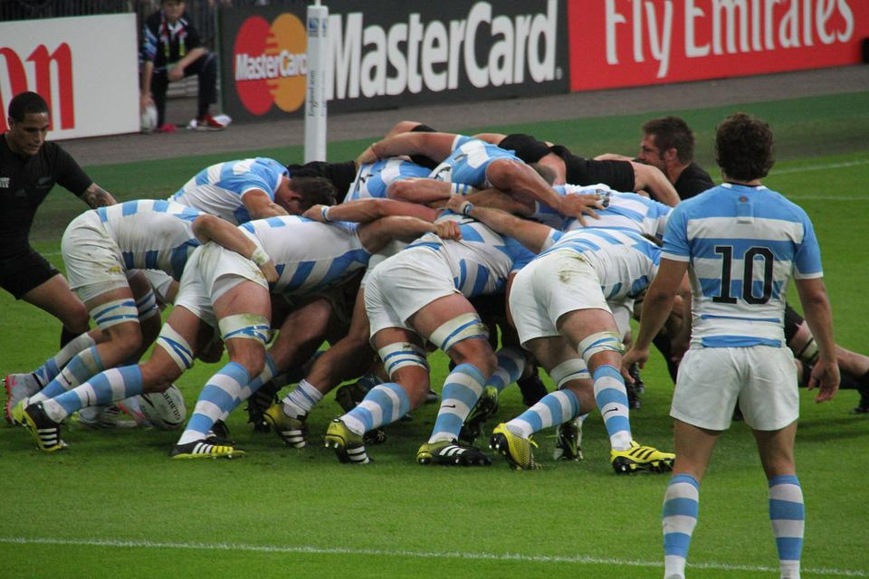 Rugby, Players, World, Cup, Stadium, Sport, Wembley